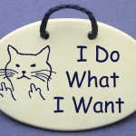 Cat saying with an attitude